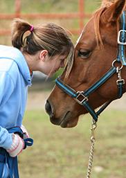 horseandgirl